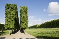 Парк города стоковое изображение rf
