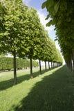 Парк города стоковое фото rf