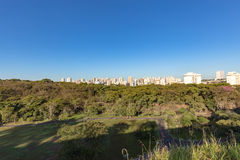 Парк города Ribeirao Preto, aka парк Curupira Стоковые Фото
