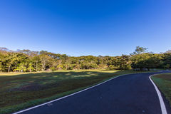 Парк города Ribeirao Preto, aka парк Curupira Стоковое фото RF