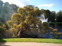 Парк городка Стоковое фото RF