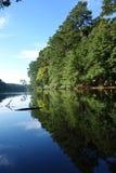 Парк Джонсона озера в Raleigh стоковые фотографии rf