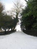 Парк Дублин Феникса, Ирландия в снеге стоковое изображение rf