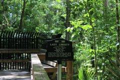 Парк дерева Sanford Fl большой Стоковое Фото