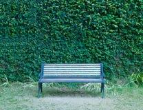 Парк деревянной скамьи Стоковое фото RF