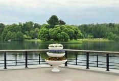 Парк лета, деревья Музей Tsaritsyno стоковая фотография rf