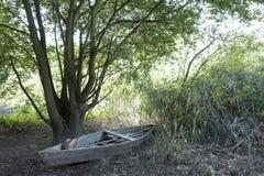 Парк делает fundo carreiro, Авейру, Португалию Стоковые Изображения RF