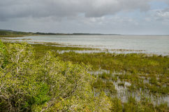 Парк заболоченного места ISimangaliso трасса сада Африки южная Стоковое Изображение