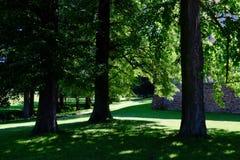 Парк замка Стоковое Изображение RF