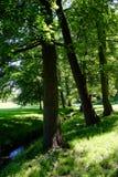 Парк замка Стоковое Фото