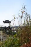 Парк запаса заболоченного места Китая национальный стоковое фото
