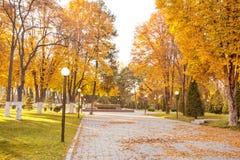 Парк захода солнца осени Стоковое Изображение RF