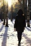 Парк зимы прогулки женщины ботинка ноги Стоковая Фотография