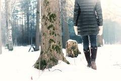 Парк зимы прогулки женщины ботинка ноги Стоковые Фотографии RF