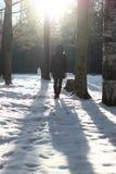 Парк зимы прогулки женщины ботинка ноги Стоковое фото RF