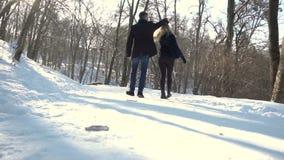 Парк зимы прогулок человека и женщины акции видеоматериалы