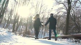 Парк зимы прогулок человека и женщины видеоматериал