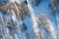 Парк зимы сверху Стоковые Изображения