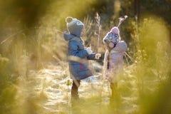 Парк зимы 2 смешной прелестный маленьких сестер Стоковые Изображения RF