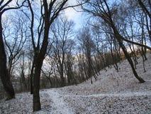 Парк зимы, Kamenets Podolskiy, Украина Стоковое фото RF