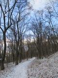 Парк зимы, Kamenets Podolskiy, Украина Стоковое Изображение RF