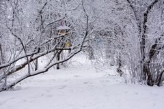 Парк зимы ulyanovsk стоковое фото rf