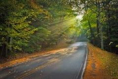парк излучает солнце Стоковые Фото
