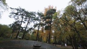 парк изображения осени горизонтально плавно кроет валы черепицей Желтый, зеленый, листовое золото пейзаж Не работая фонтан сток-видео