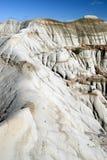 Парк динозавра захолустный Стоковые Изображения RF