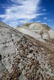 Парк динозавра захолустный Стоковое фото RF