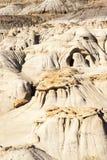 Парк динозавра захолустный Стоковые Фотографии RF