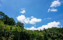 Парк и небо Стоковая Фотография RF