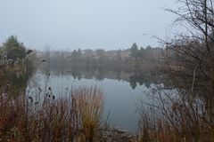 Парк и озеро в холме Ричмонда в Торонто в Канаде в утре в зиме Стоковое Изображение RF