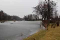 Парк и озеро зимы Стоковые Изображения