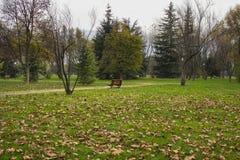 Парк и стенд Стоковые Изображения RF