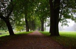 Парк Катрина в Tsarskoe Selo Стоковая Фотография