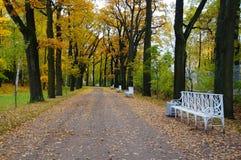 Парк Катрина в Tsarskoe Selo Стоковое Изображение RF