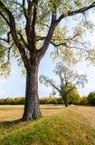 Парк культуры Hopewell национальный исторический Стоковое фото RF