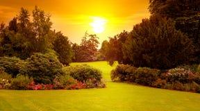 Парк лета с красивыми flowerbeds и солнце поднимают Широкое фото стоковая фотография rf