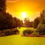Парк лета с красивыми flowerbeds и солнце поднимают стоковое изображение