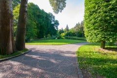 Парк лета с путями гонт, больших зеленых деревьев и глубокого пруда на заднем плане Стоковое Фото