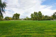 парк лужайки стоковые изображения rf