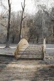парк моста Стоковое Фото