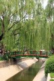 парк моста Стоковое Изображение