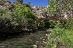 Парк моста Ayres естественный Стоковые Фото