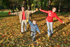 парк мухы семьи осени Стоковое Изображение