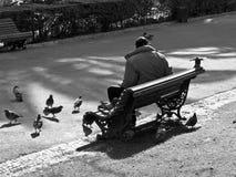 Парк на Лиссабоне Стоковые Изображения