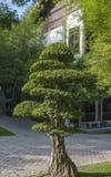 Парк нирваны мемориальный в Semenyih, Малайзии Стоковая Фотография