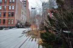 Парк новое Jork высокой ветки Стоковое Изображение RF