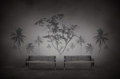 Парк ночи Стоковые Изображения